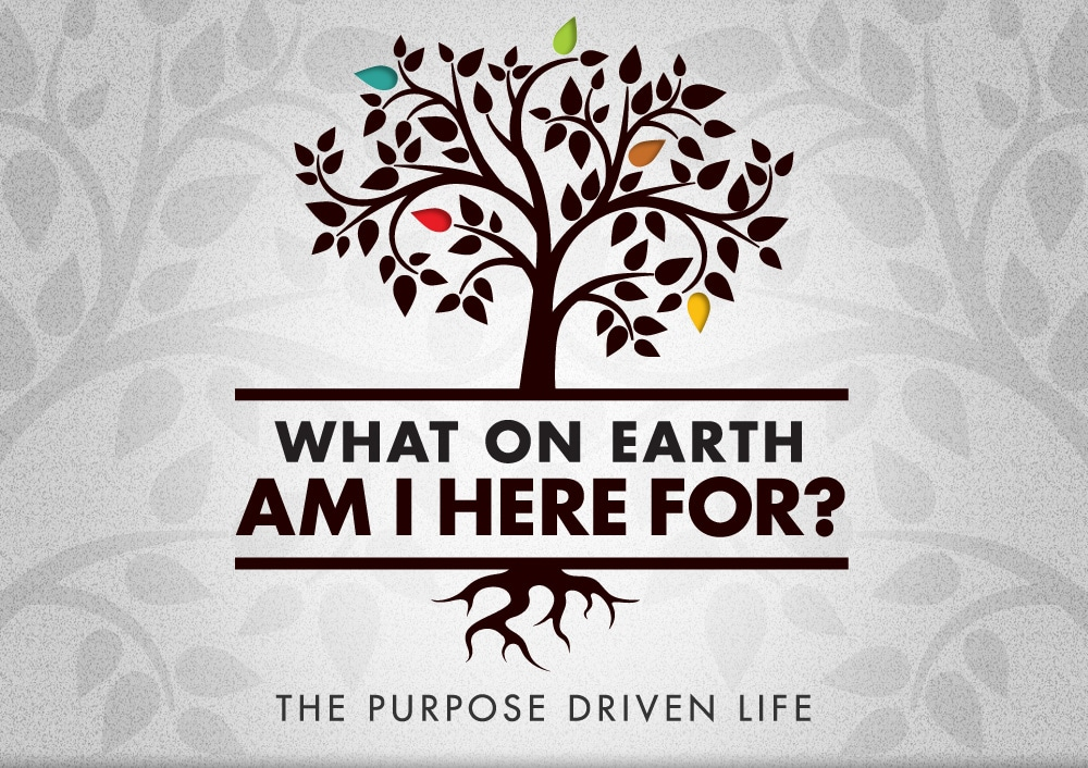 """how to have a purpose driven life Purpose driven life quotes quotes tagged as purpose-driven-life (showing 1-30 of 270) """"being successful and fulfilling your lifes purpose are not at all the same thing you can reach all your personal goals, become a raving success by the worlds standard and still miss your purpose in this life."""